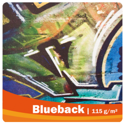 Blueback - Blockout Plakat