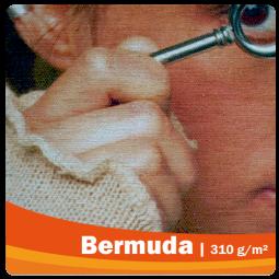 Bermuda B1